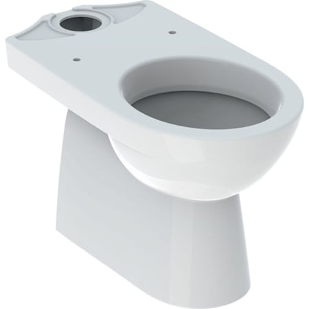 Geberit Selnova podna WC školjka za nazidni vodokotlić u monoblok izvedbi, vertikalni odvod, djelomično zatvorena forma